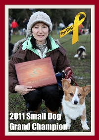 2011SmallDog_Grachan.JPG