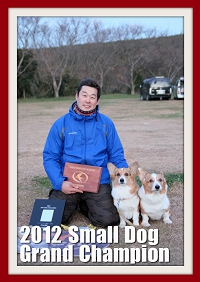 2012SmallDog_Grachan.jpg