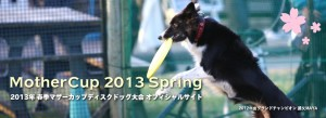 Mother2013Spring